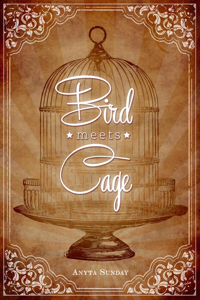 Gay Romance Novel Bird meets Cage by Anyta Sunday