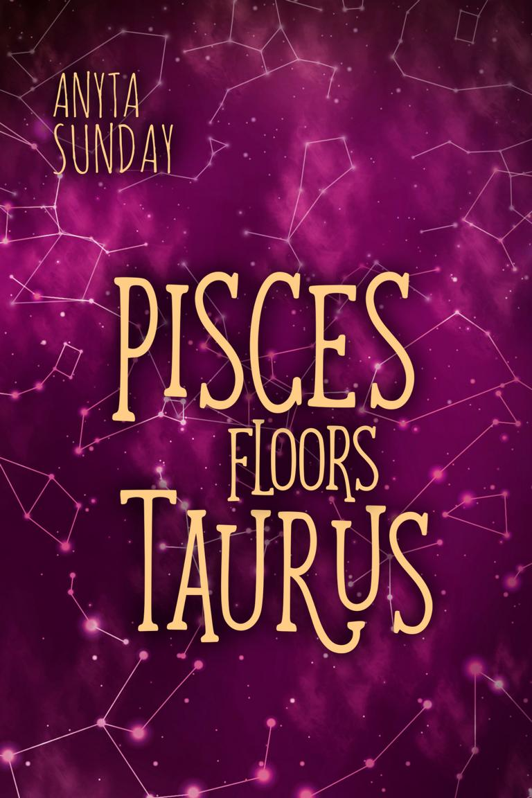 Shortstory Pisces Floors Taurus bay gay romance writer Anyta Sunday