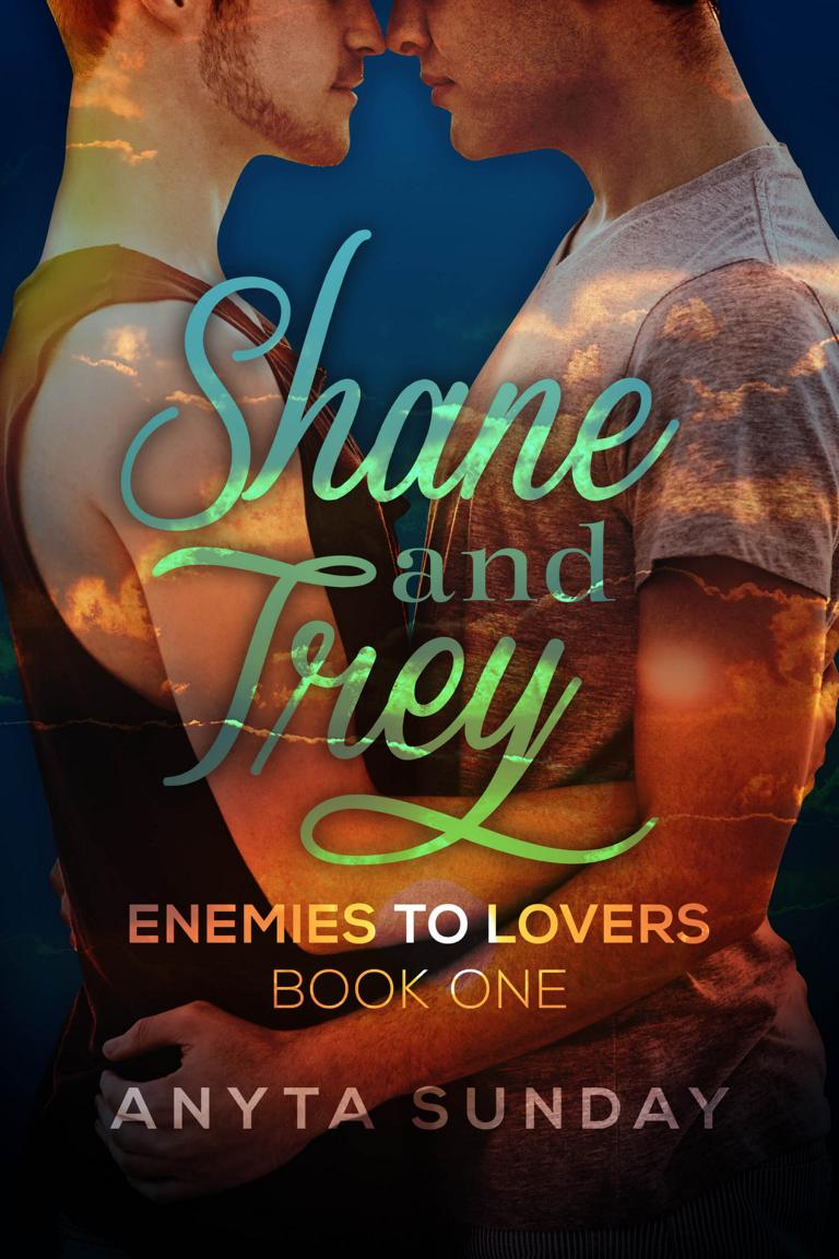 Gay Romance Novel Shane and Trey by Anyta Sunday
