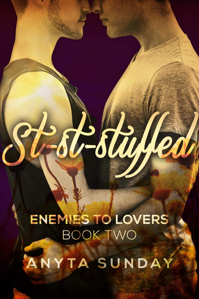 Gay Romance Novel St-St-Stuffed by Anyta Sunday