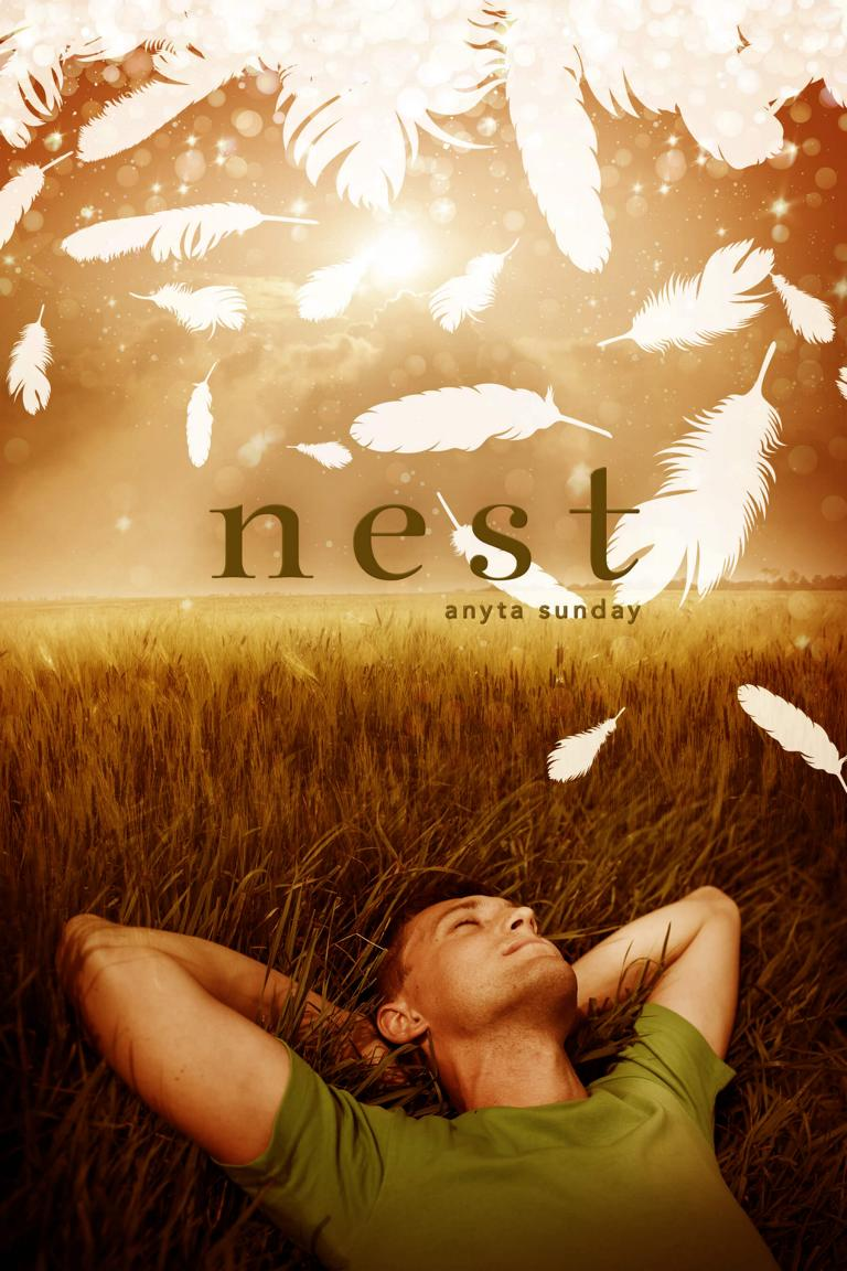 Gay Romance Novel Nest by Anyta Sunday